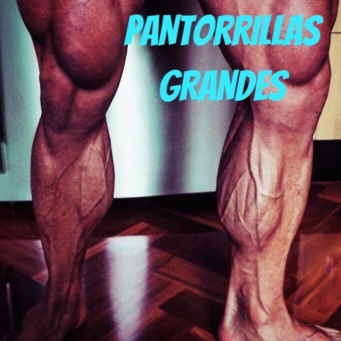 como engordar las piernas y pantorrillas