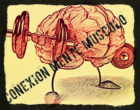 La conexión mente músculo es útil para ganar masa muscular