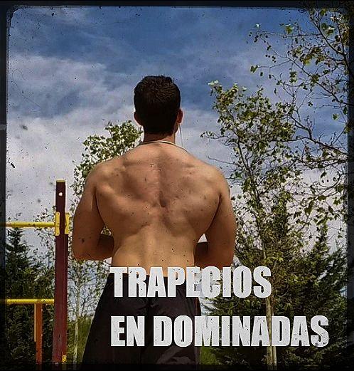 Ejercicios de trapecios con el peso del cuerpo