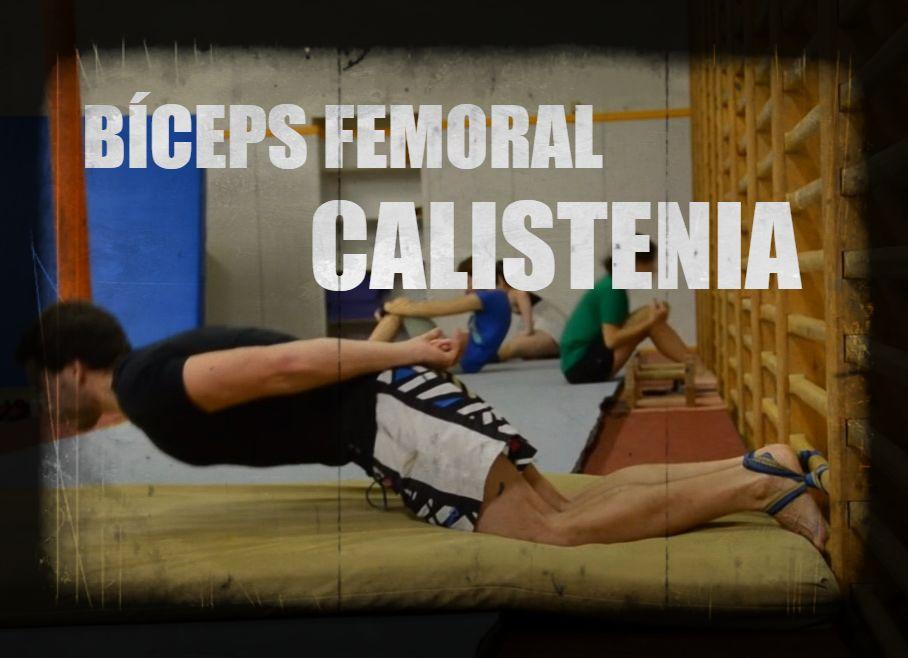 Ejercicios de calistenia para bíceps femoral en casa